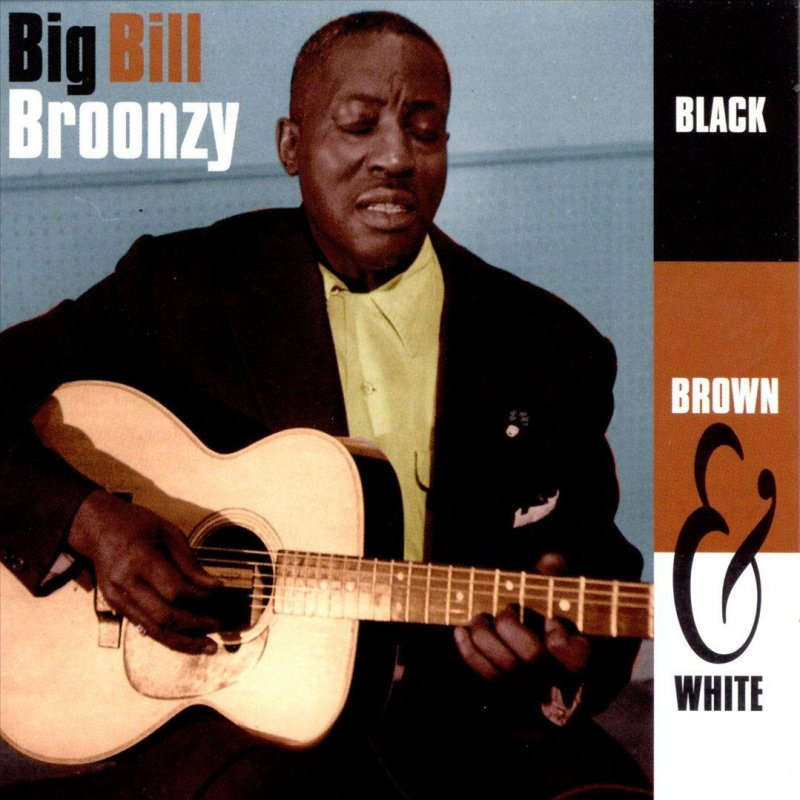 Big Bill Broonzy - Black Brown and White Blues