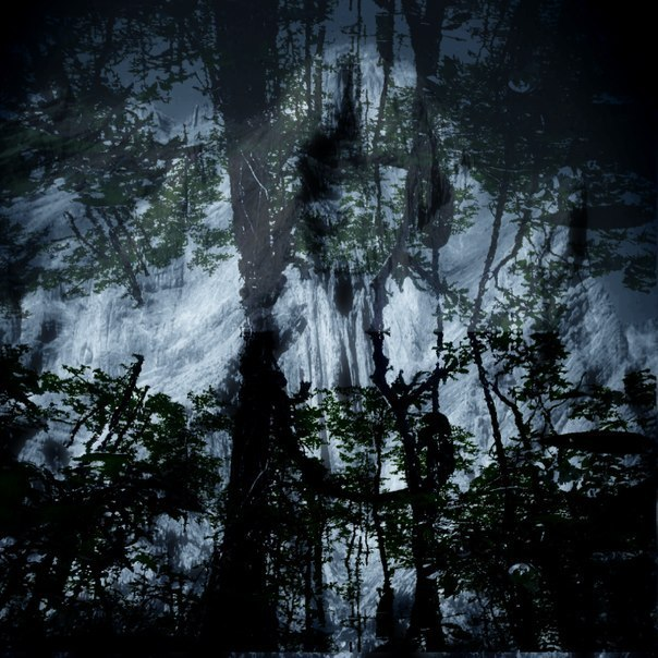 Cursed Altar - Twilight In The Forest Of Suicide