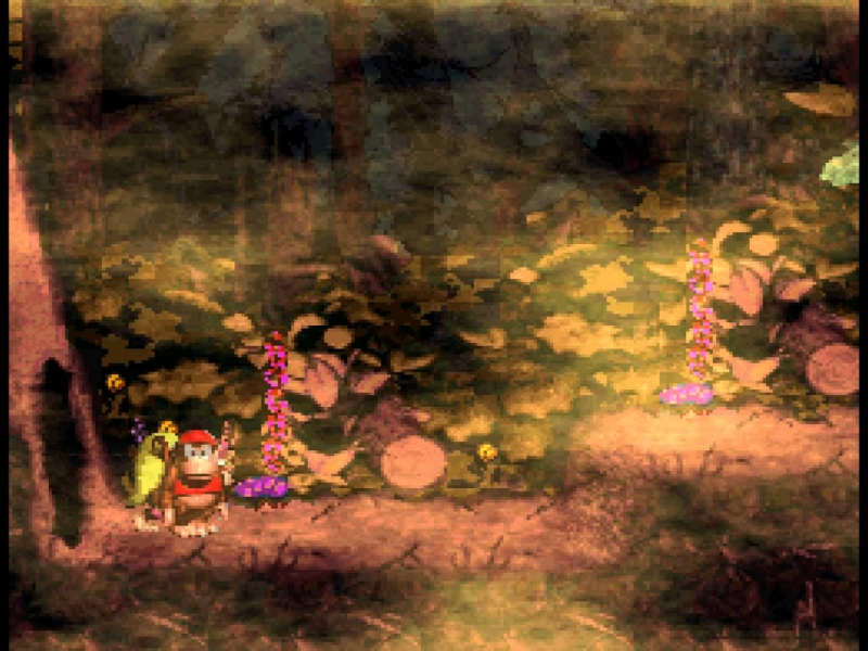 Donkey Kong Country 2 - Forest Interlude