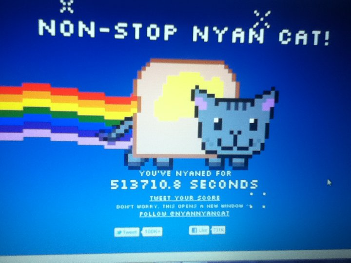 mean cat song dailymotion
