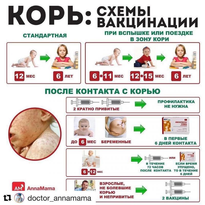 План прививок от кори