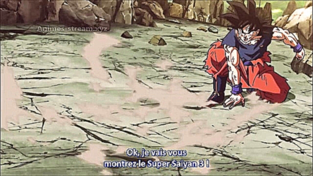 Dragon-Ball-Super -113.Vostfr - [ EPISODE PREVIEW ]