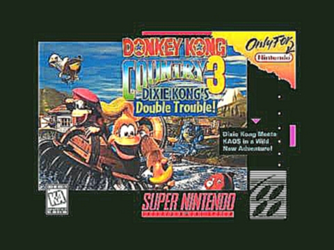 Donkey Kong Country 3 Soundtrack: Life Lost Village (1080p)